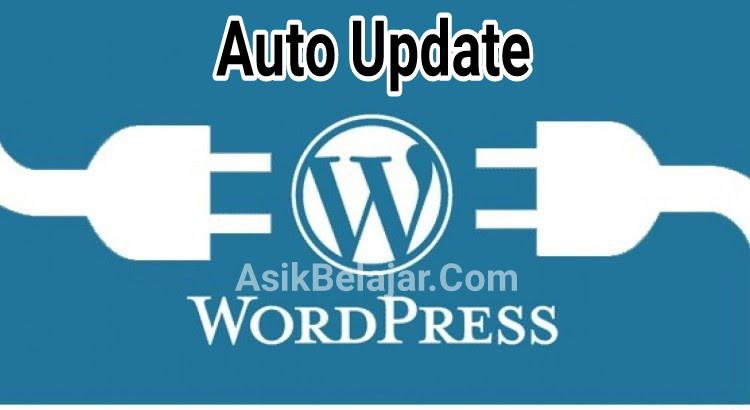Auto update plugin